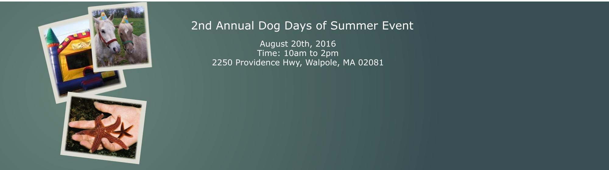 vetneuroandpain-dog-day